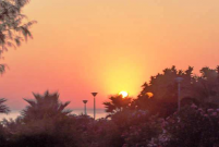 Watch the Sunset from Sienna Restaurant in Paphos, Cyprus